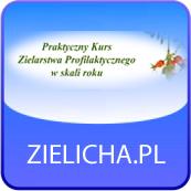 zielicha